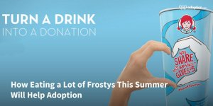 How-Eating-a-Lot-of-Frostys-This-Summer-Will-Help-Adoption